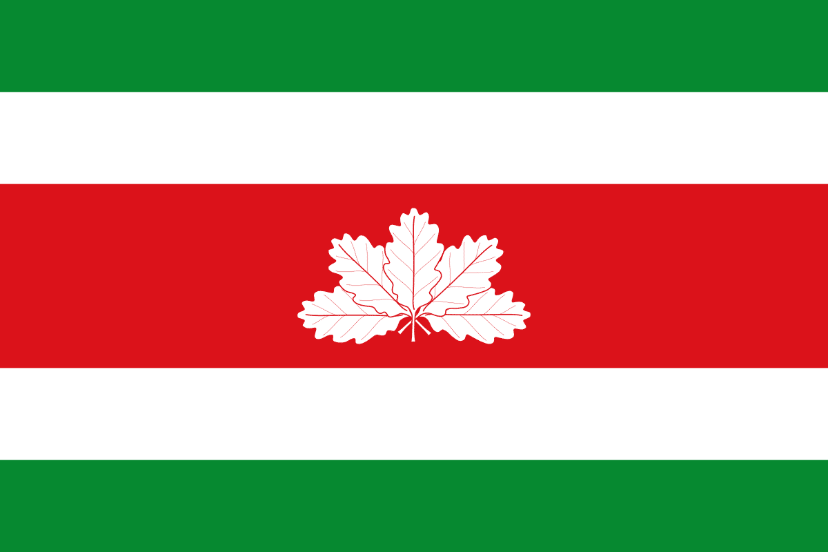 bandera-de-colombia-14