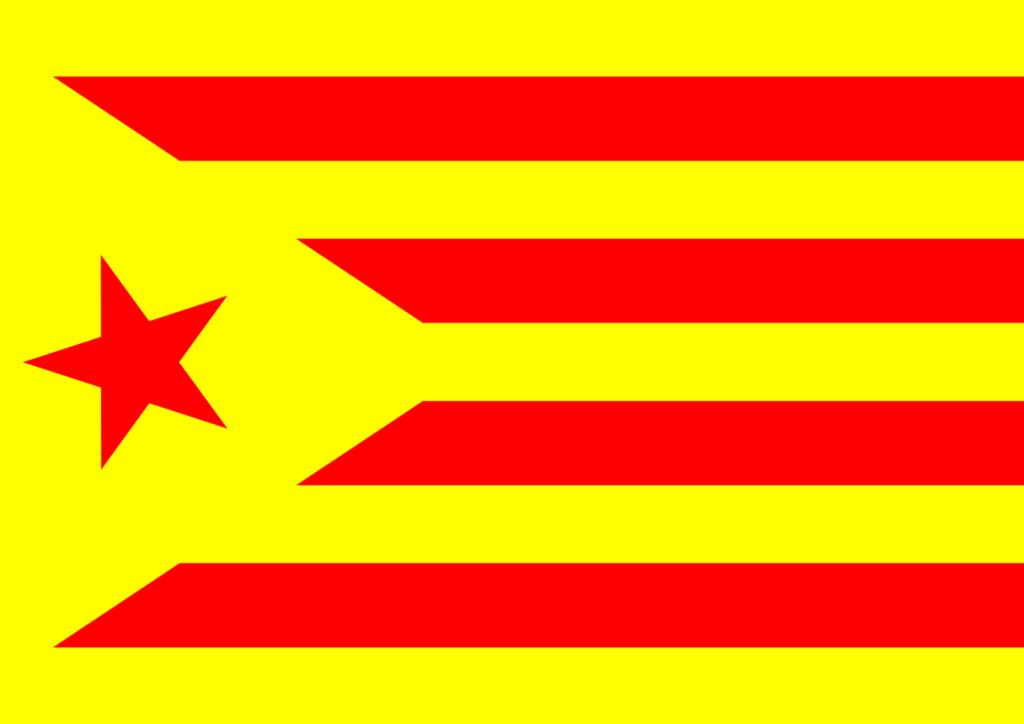 Bandera de España 14