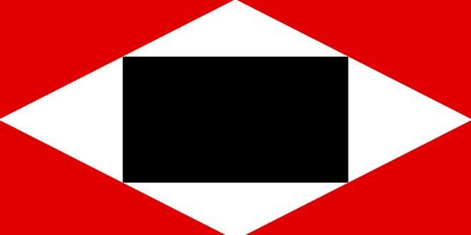 Bandera de Venezuela 10