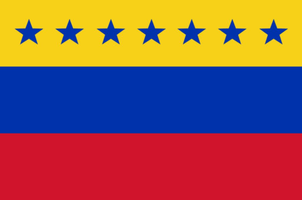 Bandera de Venezuela 11