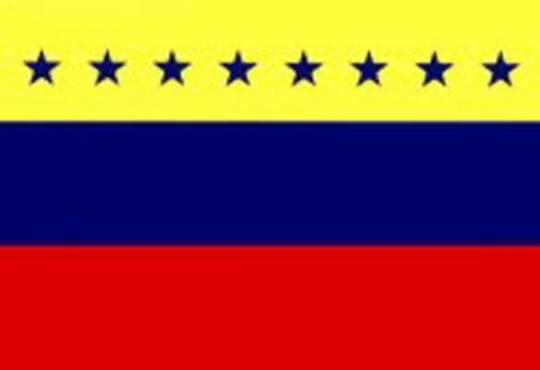Bandera de Venezuela 12