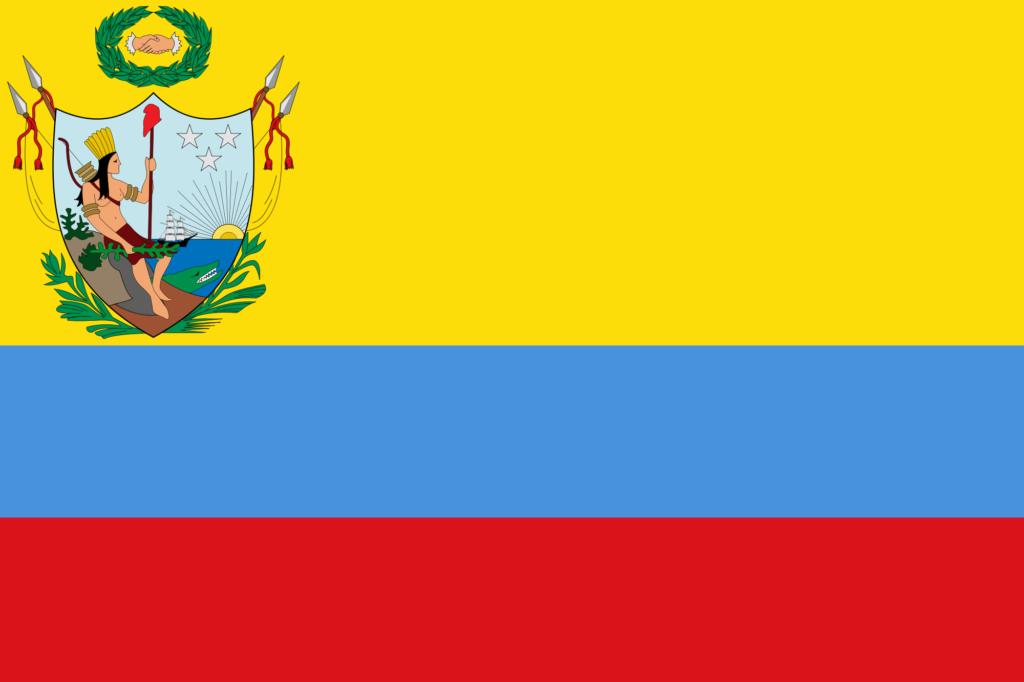 Bandera de Venezuela 13