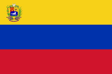 Bandera de Venezuela 17