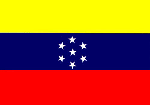 Bandera de Venezuela 20