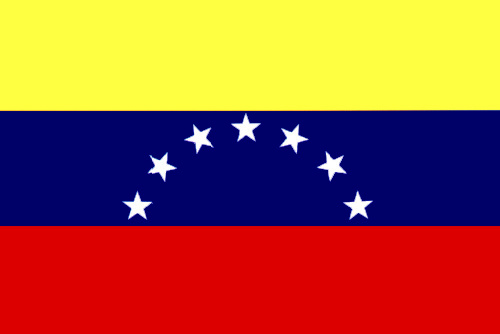 Bandera de Venezuela 25