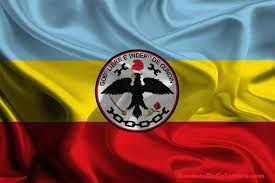 Bandera de Cundinamarca 5