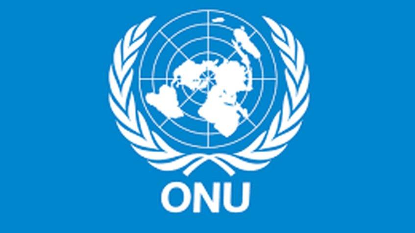 Bandera de la ONU 1