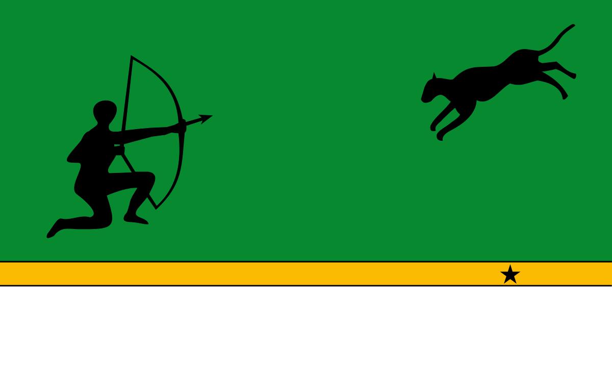banderas de amazonas