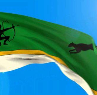 ¿Sabe cómo son las Banderas de Amazonas? Descúbralo aquí