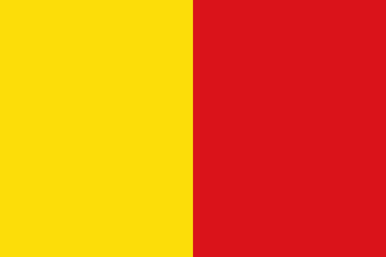 ver-Bandera de Ecuador-29