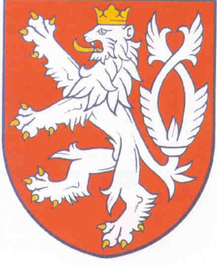 ver-Bandera de República Checa-5