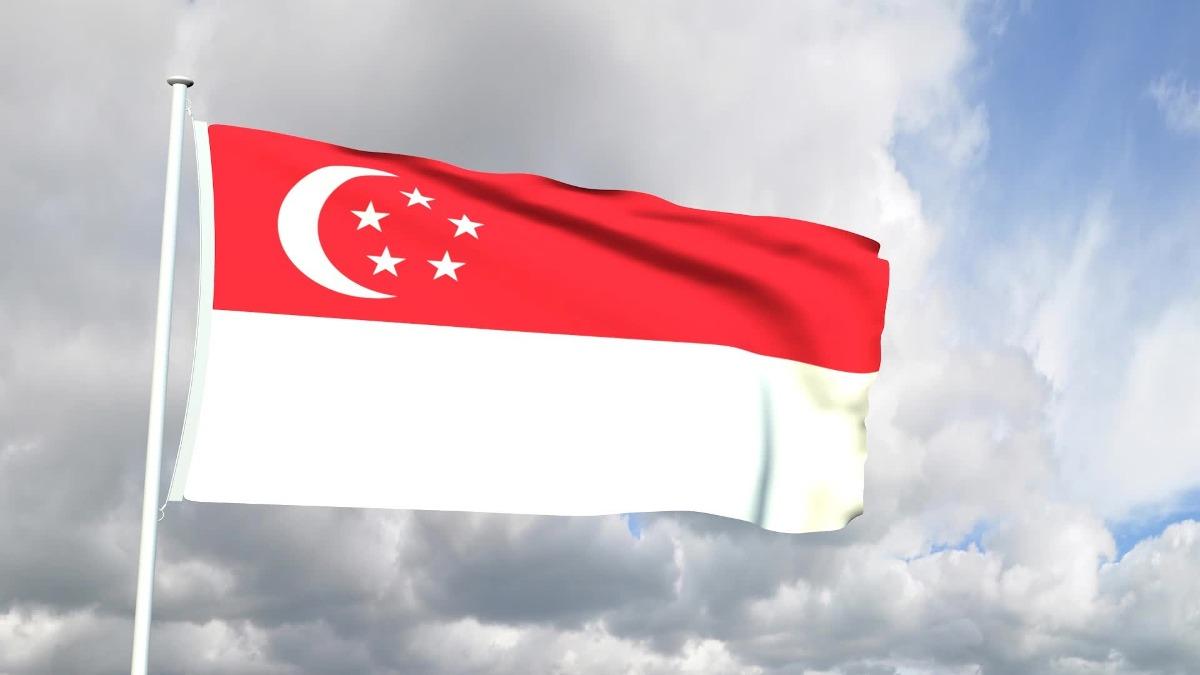 ver-Bandera de Singapur-1