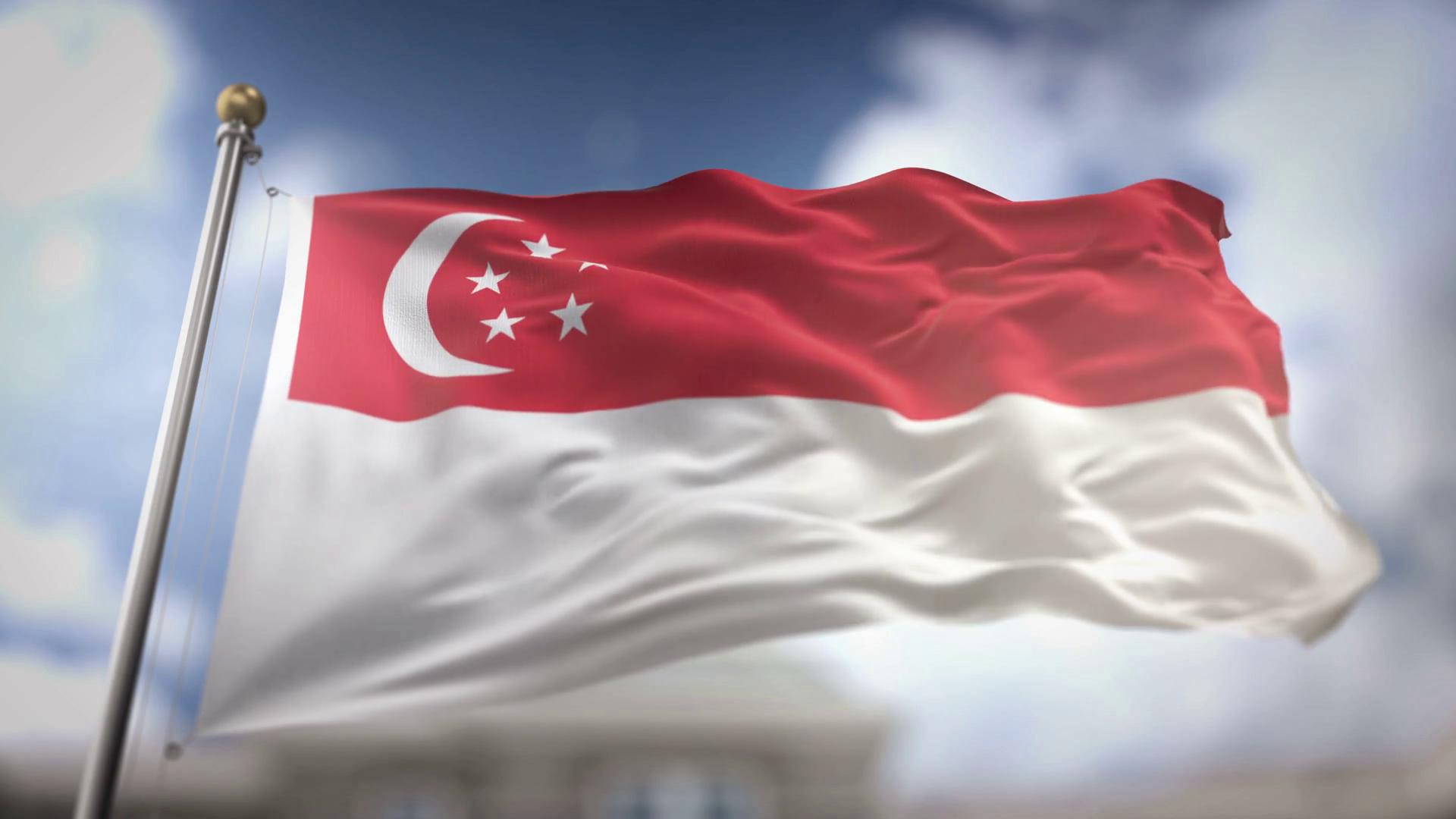 ver-Bandera de Singapur-2