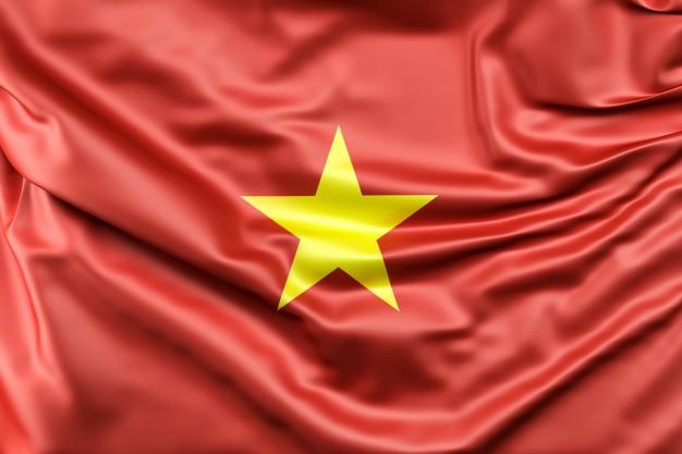ver-Bandera de Vietnam-1