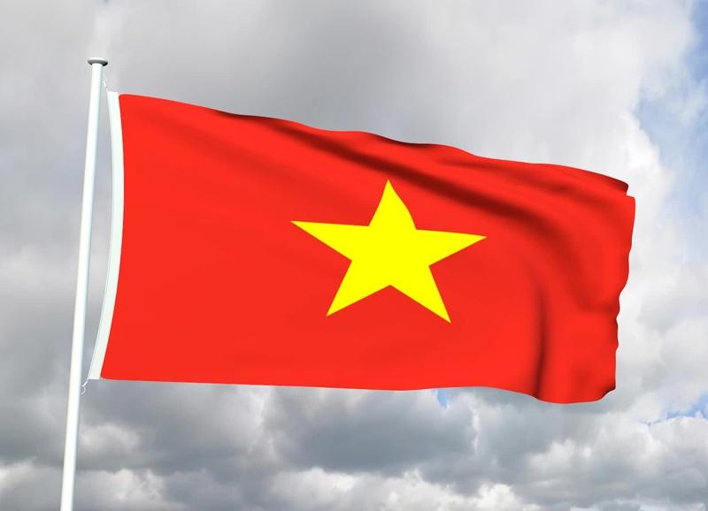 ver-Bandera de Vietnam-2